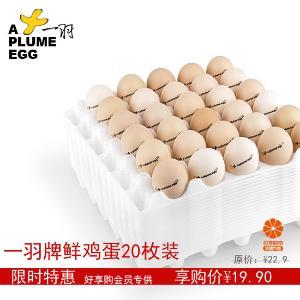 一羽鲜鸡蛋20枚