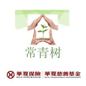 華夏常青樹重大疾病保險(年繳)